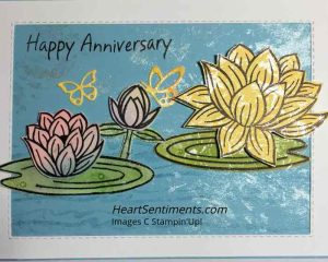 Lovely Lily Pad card