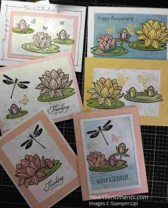 Lovely Lily Pad cards